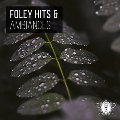 Foley Hits and Ambiances