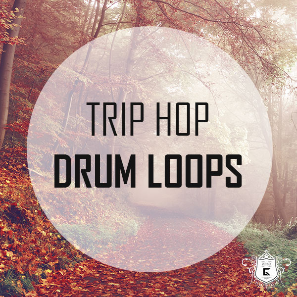 16 Trip Hop Drum Loops